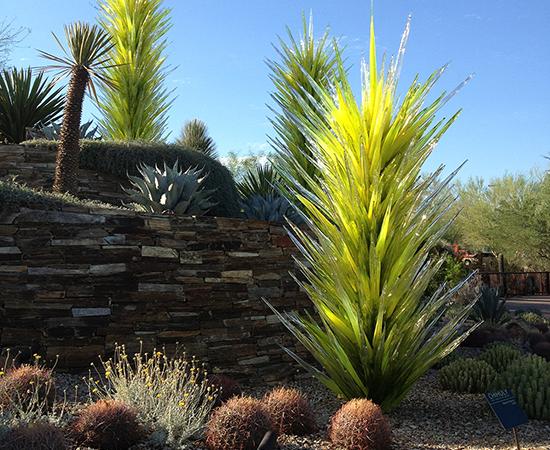 Botanical Gardens, AZ